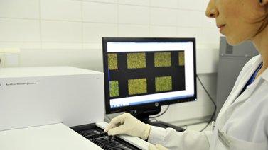 CCS. Estudio cromosómico del embrión