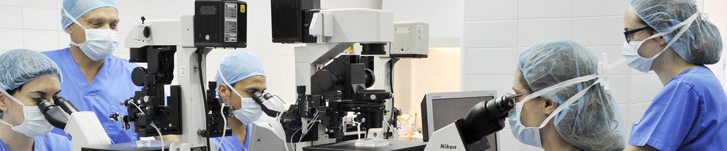 A la vanguardia en investigación personalizada en Reproducción Asistida