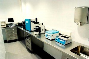 Laboratorio FIV - Instituto Bernabeu Albacete