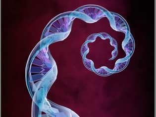¿Qué variantes genéticas incrementan el riesgo de fallo de implantación y aborto de repetición? Investigación IB para ESHG 2016.