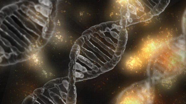 The Instituto Bernabeu studies chromosome abnormalities in very young women