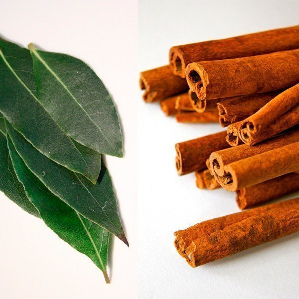 Instituto Bernabeu discovers that natural antioxidants found in bay leaves and cinnamon improve spermatozoa quality