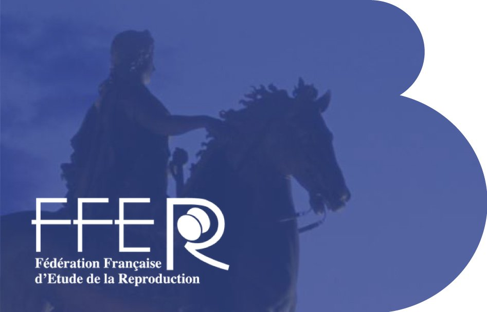 Nuevo IB BOLETÍN: Nuevos avances científicos presentados al congreso FFER de Lyon
