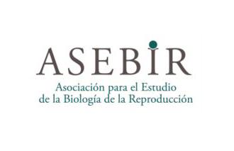 Premio ASEBIR 2013 de Investigación Básica. Otorgado a la mejor Comunicación Oral del VII Congreso Nacional ASEBIR