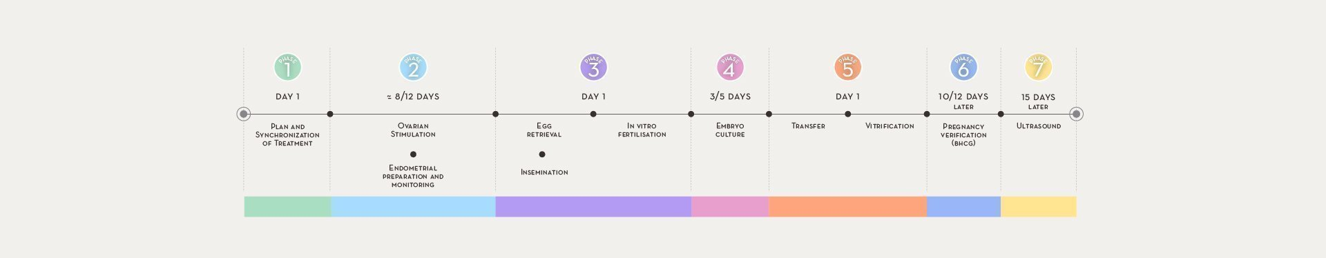 IVF: In Vitro Fertilization, treatments at Instituto Bernabeu