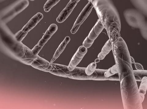 Indications of Preimplantation Genetic Diagnosis (PGD)