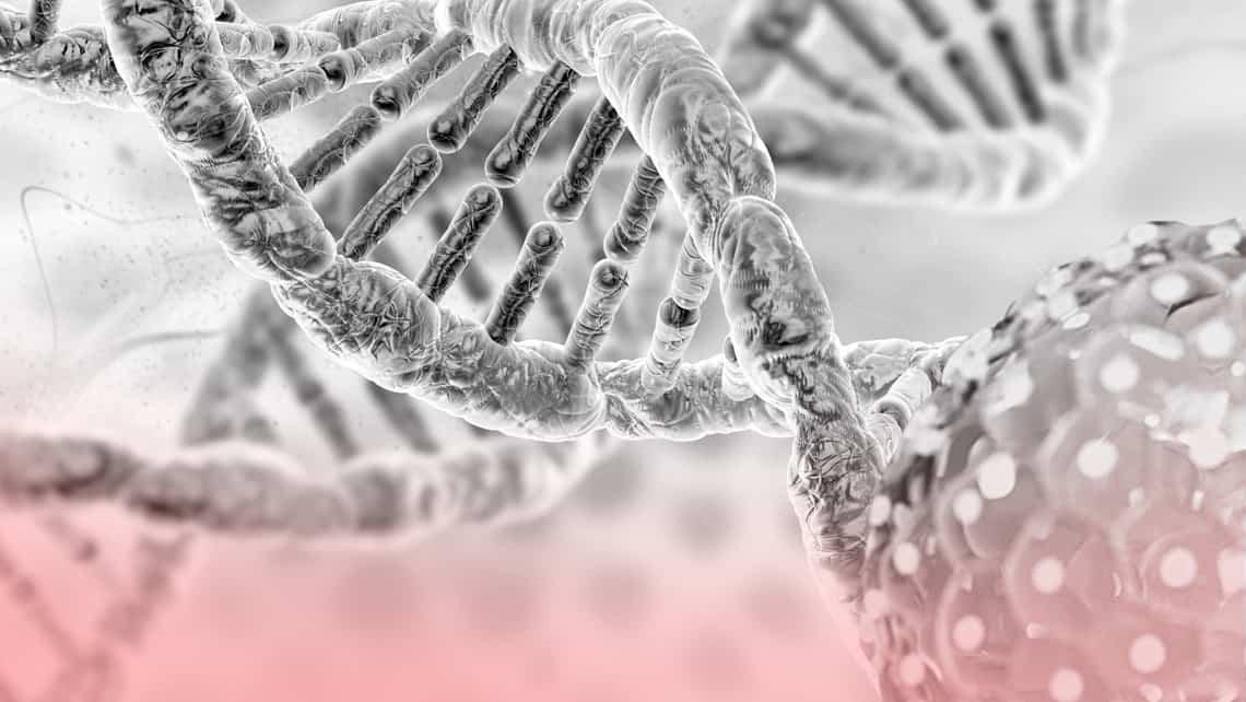Cos'è il mosaicismo embrionale?