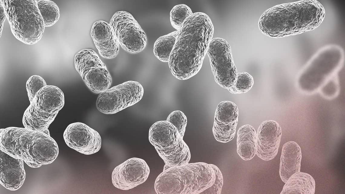 Los microorganismos que viven en ti afectan a tu fertilidad. Microbioma