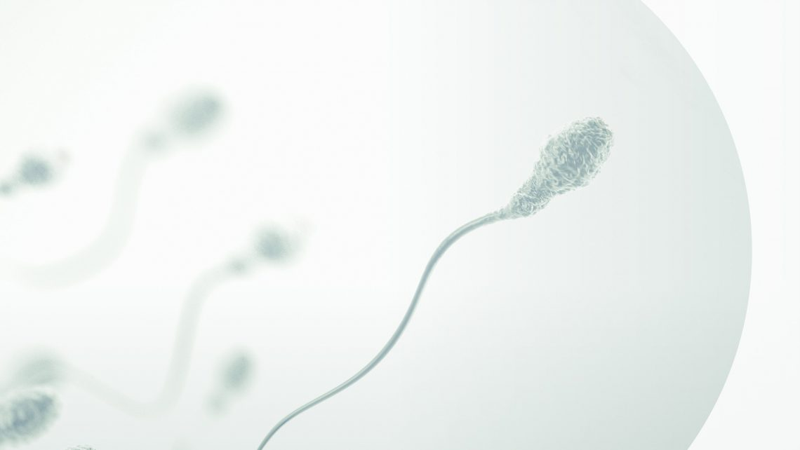 Instituto Bernabeu and the University of Castilla-La Mancha, Spain, are organising the third edition of the Master's Course in Male Infertility