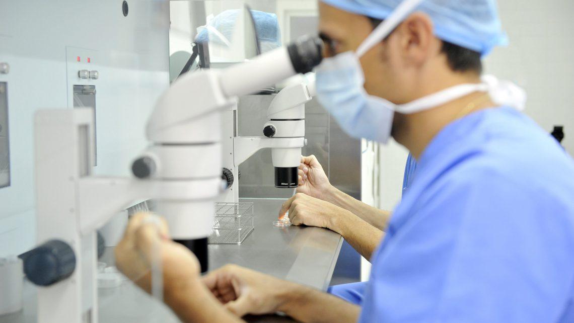 L'Instituto Bernabeu studia come influisce la stimolazione ovarica aleatoria delle donatrici di ovociti sul tasso di gravidanza