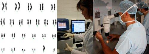 Abordaje genético en el Fallo de implantación embrionario y en el aborto de repetición