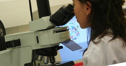 Tecnología de vanguardia en el diagnóstico preimplantacional embrionario: array-CGH