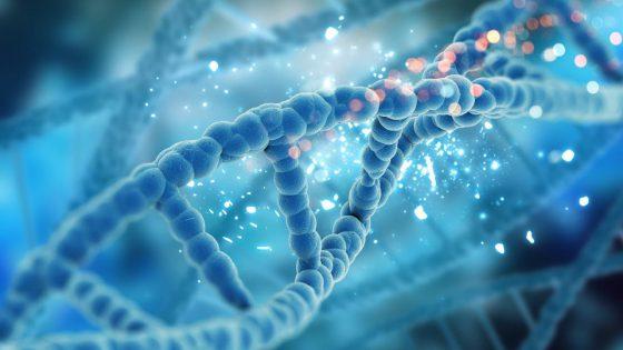 Pharmakogenetik für die Behandlung der niedrigen ovariellen Reaktion