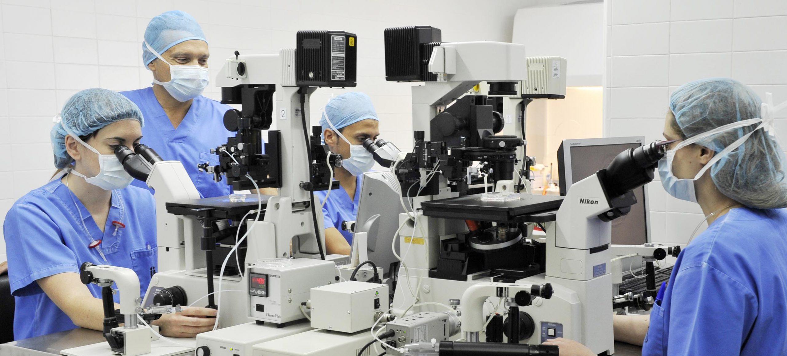 IVF oder ICSI Instituto Bernabeu