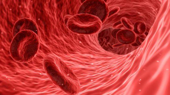 Síndrome Antifosfolípido: ¿qué es? ¿cómo afecta a la consecución del embarazo?