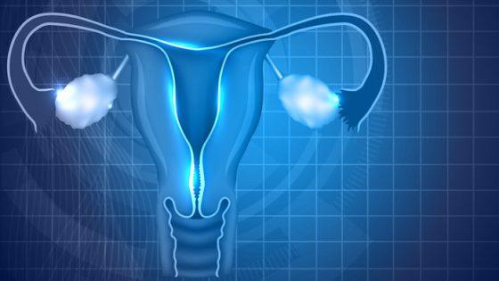 Chirurgie endoscopique pour la fertilité