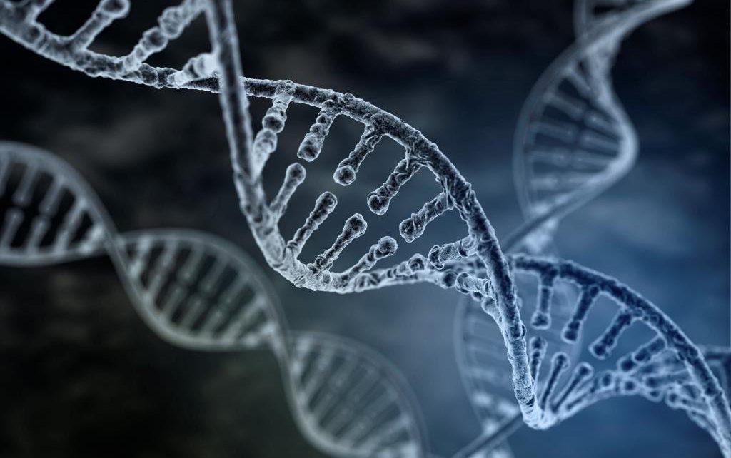 Baja respuesta ovárica: Avances en genética