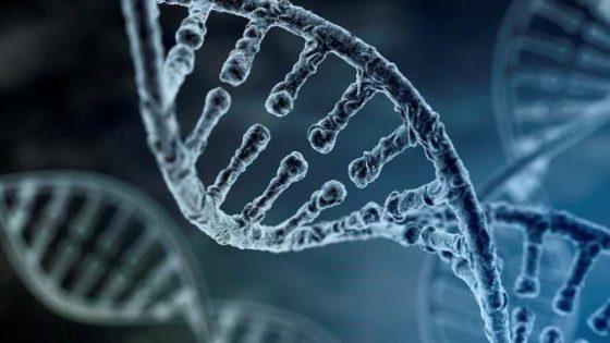 La importancia del ADN en nuestra vida: 25 de abril Día Mundial del ADN