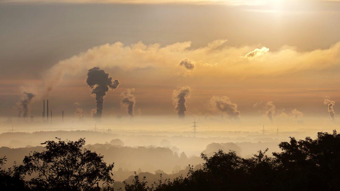 Efecto de la contaminación ambiental en el desarrollo de gametos y embriones