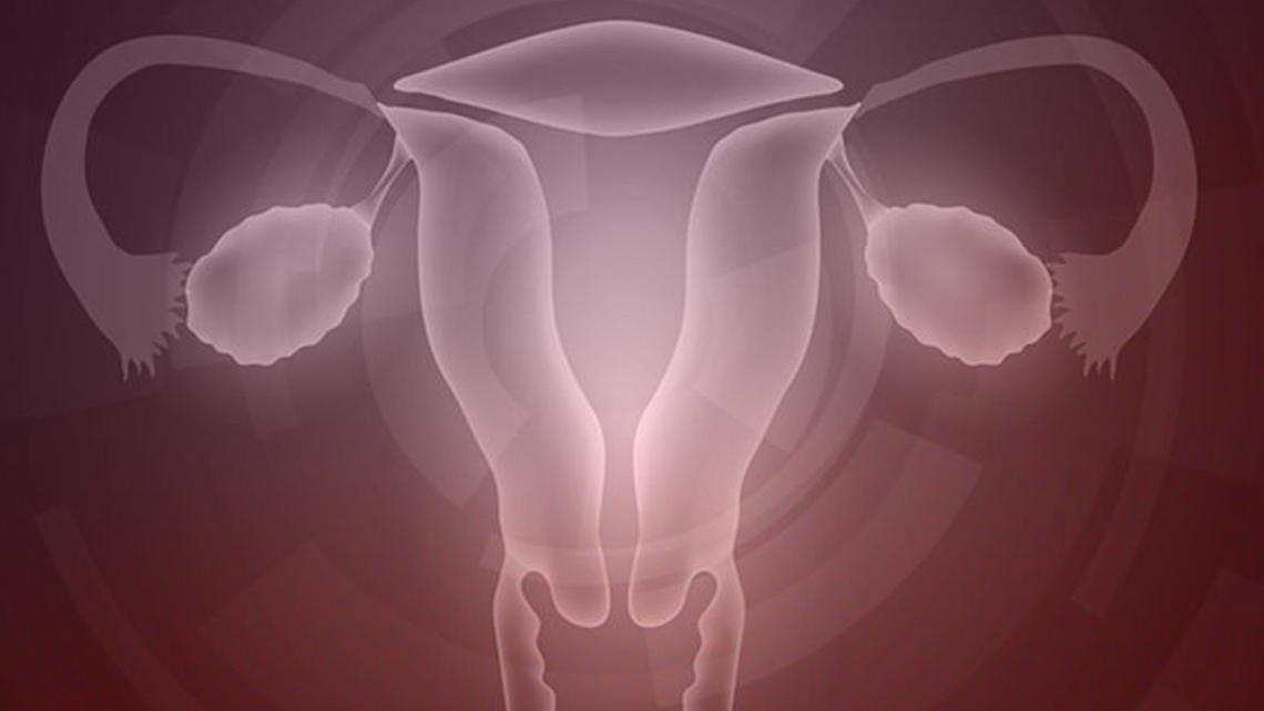 Del rejuvenecimiento ovárico a la activación de folículos, estrategias para la paciente con baja reserva ovárica