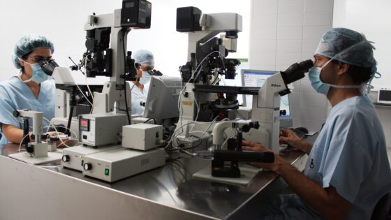 14 Forschungsstudien werden auf dem nationalen Kongress der Spanischen Fertilitäts Gesellschaft (Sociedad Espanola de Fertilidad – SEF) präsentiert