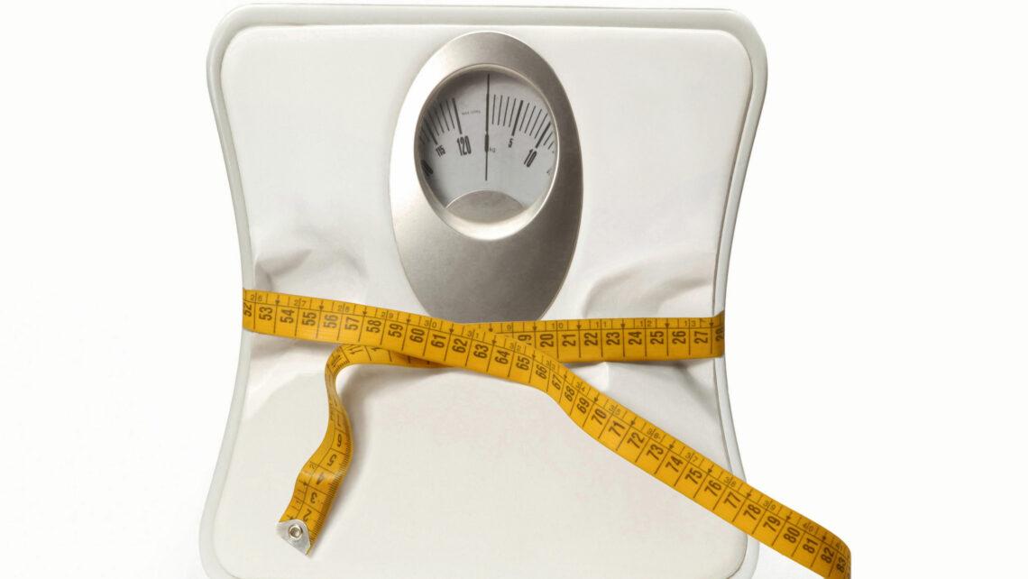 Fettleibigkeit und embryonaler Implantationsfehler