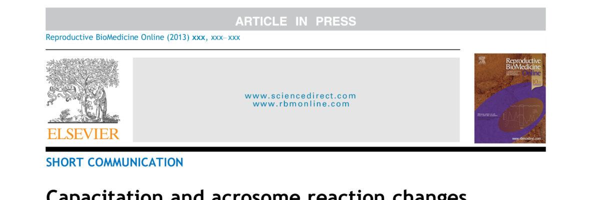 Capacitation and acrosome reaction changes α-tubulin immunodistribution in human spermatozoa