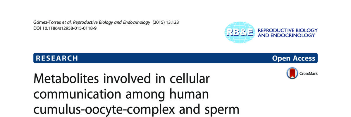Metabolites involved in cellular communication among human cumulus-oocyte-complex and sperm during in vitro fertilization