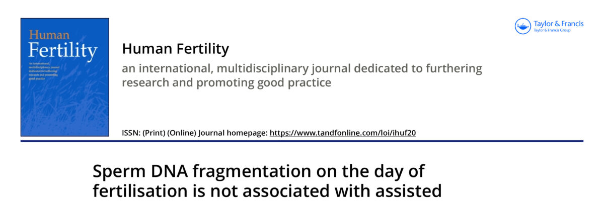Sperm DNA fragmentation on the day of fertilisation is not associated with assisted reproductive technique outcome independently of gamete quality