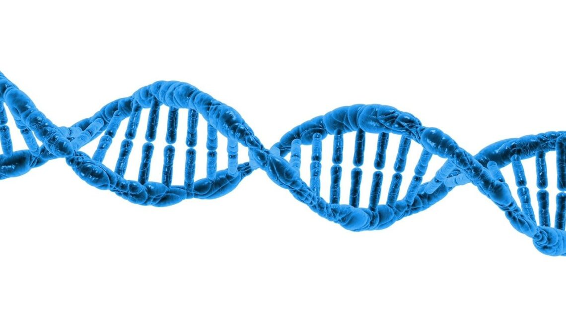 IB Research: The POLG genetic variant and its relation to low ovarian reserve.