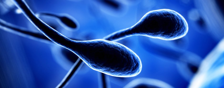 Does paternal age affect embryonic genetics? IB Research for ESHG 2016.