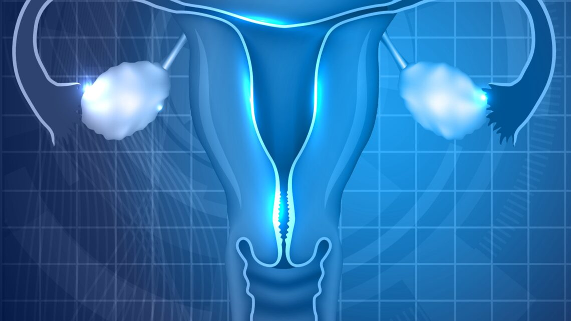 IB research on assessments methods of uterine peristalsis before embryo transfer