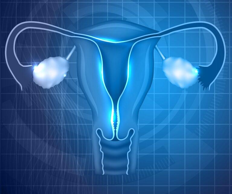 Endometrial Receptivity Array (ERA-Test)