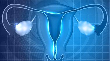 ¿Cuál es la definición de menopausia?