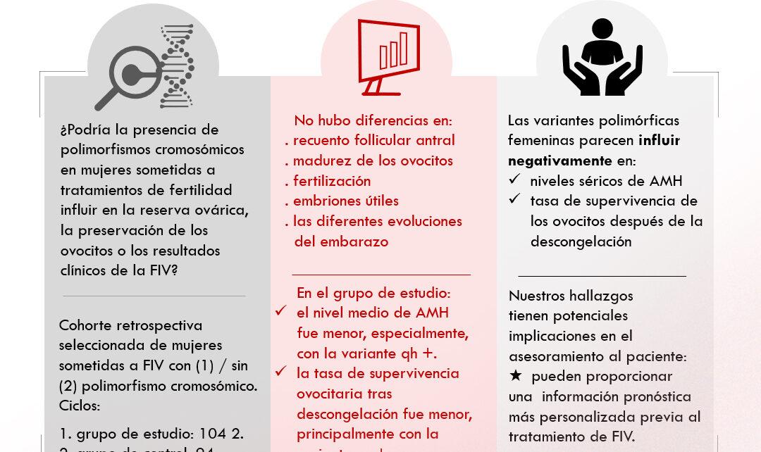 Instituto Bernabeu investiga los nexos entre los polimorfismos cromosómicos con los resultados de la fecundación in vitro