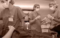 Transferring the embryos