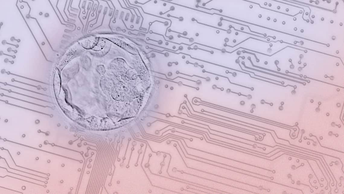Research by Instituto Bernabeu applies Artificial Intelligence to predict mosaicism and aneuploidies in the embryo