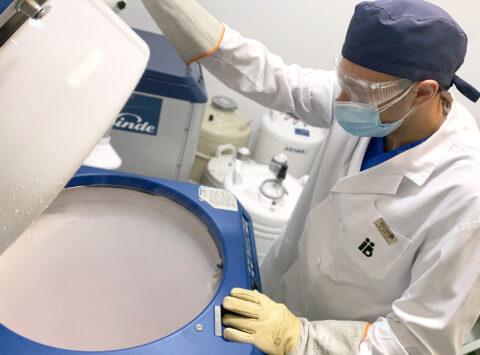Todo lo que debes saber sobre la vitrificación de embriones