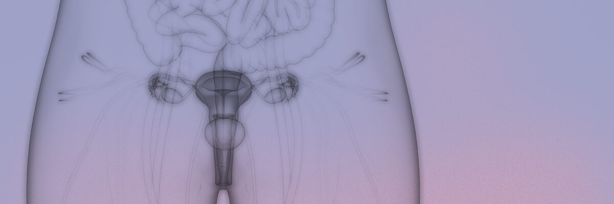 Implantation failure and repeated miscarriage unit