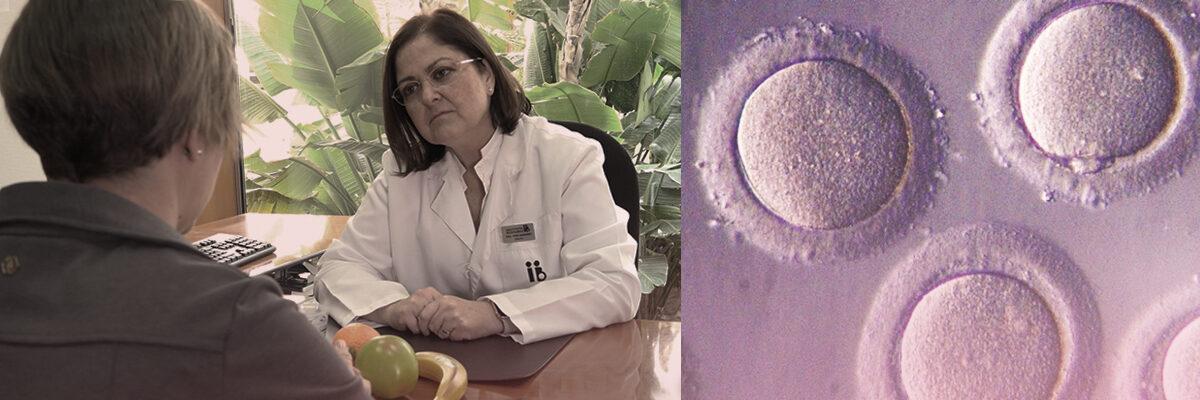 Fertilidad y Endocrinología