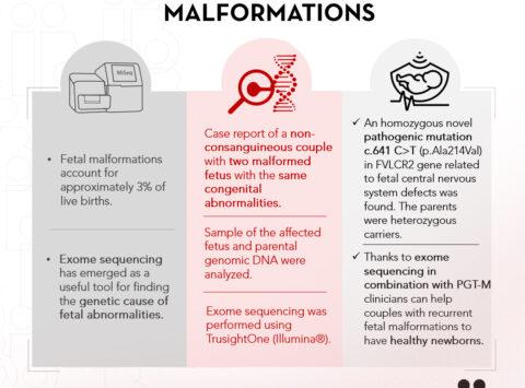 Das Instituto Bernabeu untersucht die Sequenzierung des Exoms und die genetischen Tests vor der Implantation des Embryos zur Entdeckung von unerklärlichen wiederholten Fehlbildungen des Fötus