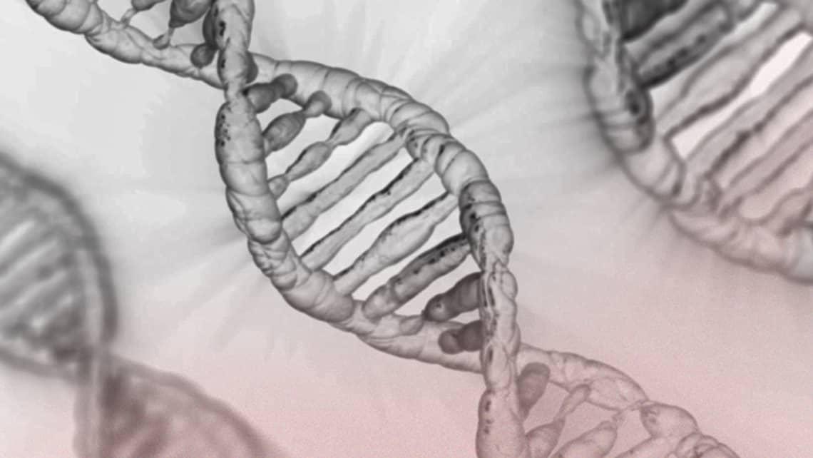 Instituto Bernabeu studia il sequenziamento dell'esoma e le analisi genetiche previe all'annidamento dell'embrione per rilevare malformazioni fetali ricorrenti inspiegabili