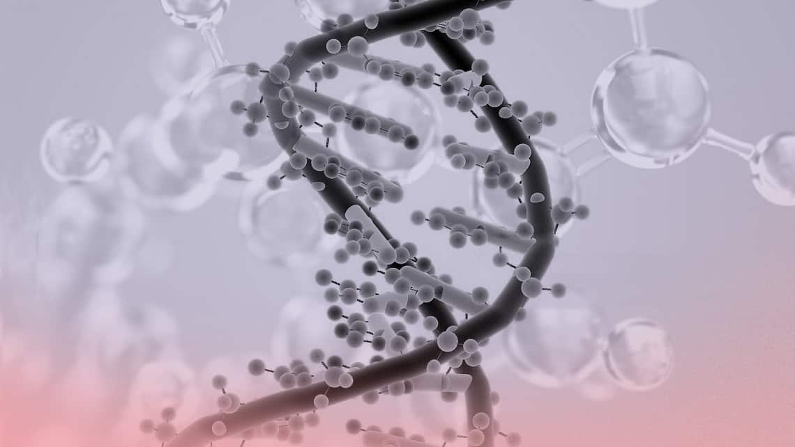 Das HLA-C-Antigen und dessen Auswirkung auf die Implantationsentwicklung