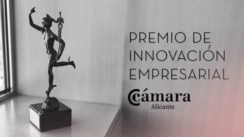 Instituto Bernabeu, Premio a la Innovación Empresarial de la Cámara de Comercio